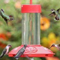 Glass Hummingbird Feeders