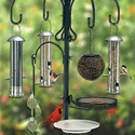 bird feeding station feeders