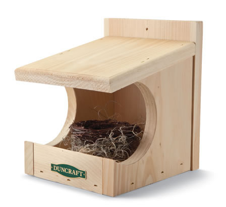 robin bird house plans
