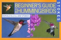 beginning hummingbirds book