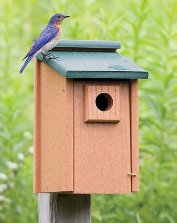 Best eco bluebird house last forever for Types of birdhouses for birds