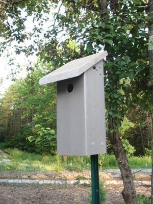 Deck Scrap Birdhouse