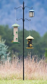 multi bird feeder banner