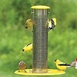 house finch feeder with tray