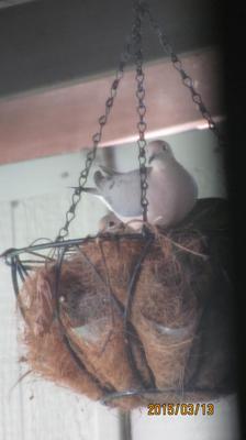 Nesting Doves