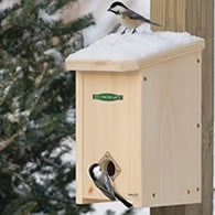 winter roosting box for birds
