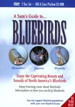 what bluebirds do Book