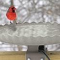 heated birdbath deck mounted