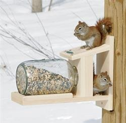 squirrel using feeder