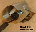 bird house cam