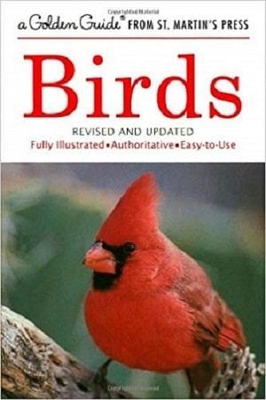 Birds A Golden Guide