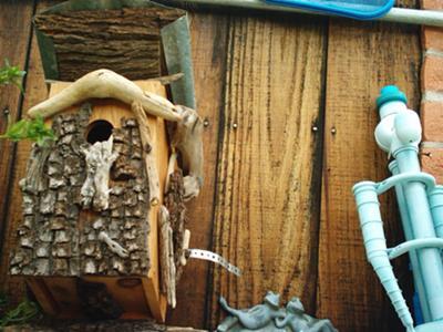 Acorn Woodpecker Nest Box