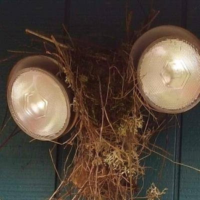 Nest on Security Lights