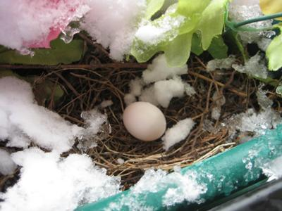 Nest in the snow