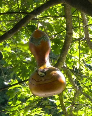 Happy Face Gourd Bird House