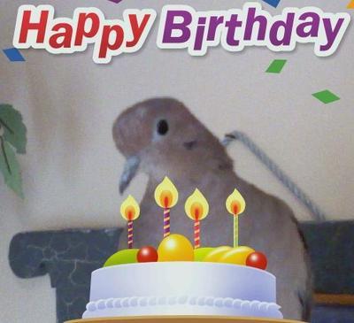 Celebrating my hubby's b-day