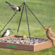platform feeder for doves