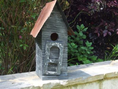 My First  Birdhouse