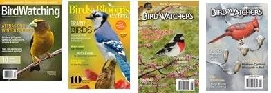 bird watching magazine titles